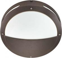 "Nuvo 60/2548 - Hudson ES - 2 Light 18w GU24 - 13"" Round Hooded Wall / Ceiling Fixture"