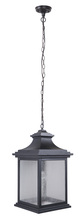Craftmade Z3221-11 - 1 Light Midnight Outdoor Pendant