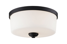 Z-Lite 220F3 - 3 Light Flush Mount