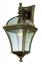Trans Globe 5084 BK - One Light Black Clear Beveled Edges, Curved, Glass Roof Glass Wall Lantern