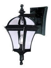 "Trans Globe 5084 BK - Washington 19"" Wall Lantern"