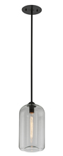 Troy F5561 - DISTRICT 1LT PENDANT SMALL