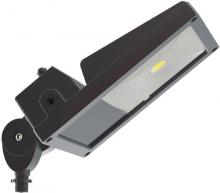 Nuvo 65/070 - LED Flood Light 22W